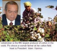 Turn Around Mantra For Uzbek Farm Sector