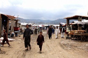 1,000 Afghans flee fighting every day