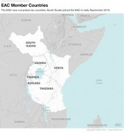 East Africa: Where Ambition Meets Reality: A Stratfor Analysis